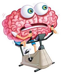 Физические упражнения противостоят влиянию возраста на мозг