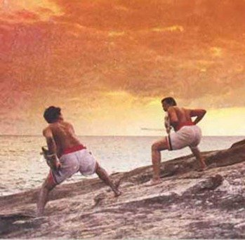 Боевая йога