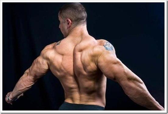 Упражнения для мышц спины фото