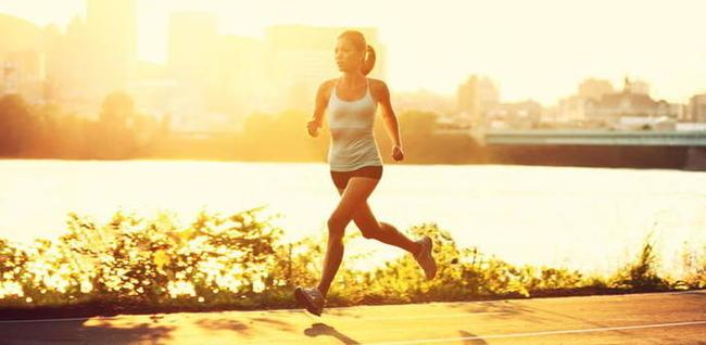 Бег медленные мышечные волокна