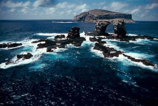 Галапагосские острова дайвинг