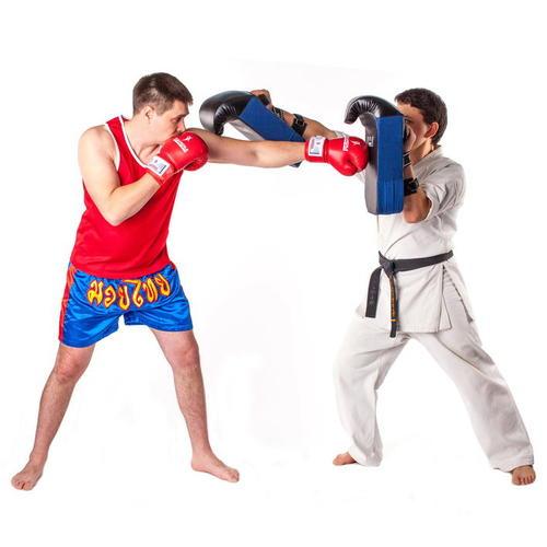 Инвентарь для боевых искусств фото