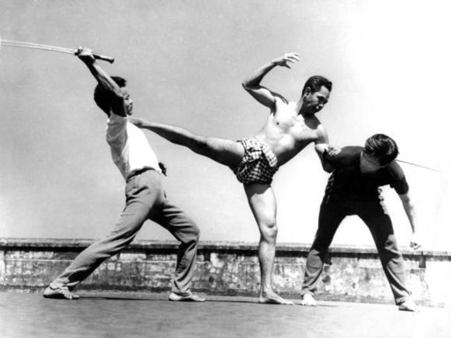Разновидности боевых искусств