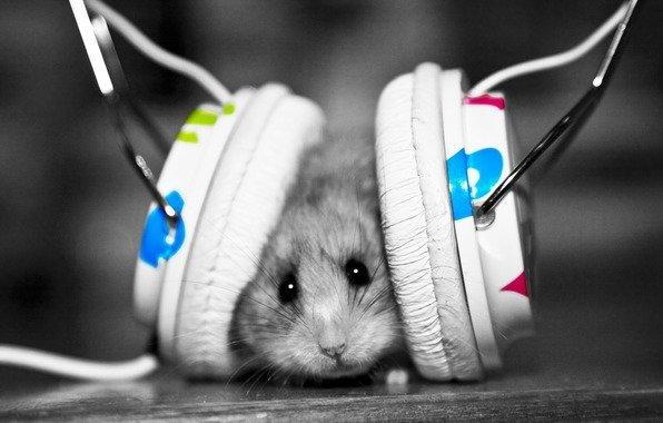 Вред музыки для спортсмена